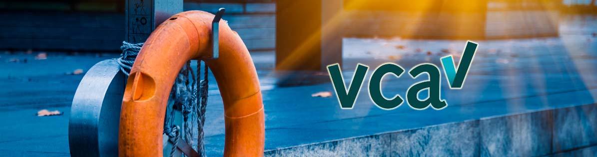 homepage-VCA-blok